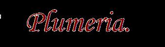 Beauty Salon Plumeria  |沖縄県那覇市小禄のエステ「プルメリア」